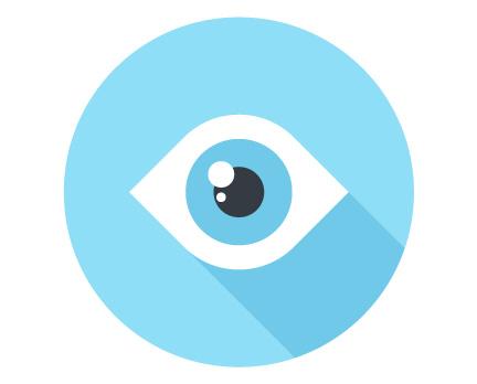 WordPress iThemes Security Pro Plugin